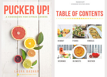 Citrus ecookbook cover and table of contents